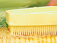 corn-on-the-cob cleaning brush